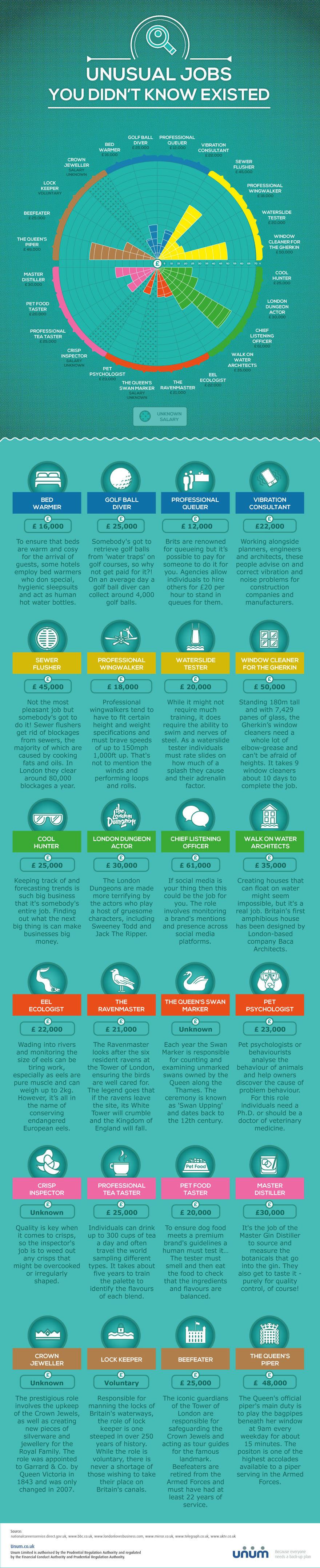 weird jobs infographic