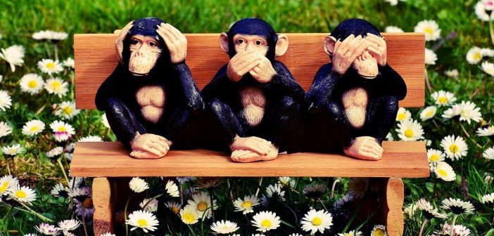 words to describe yourself speak no evil monkeys